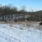 snow prairie MN